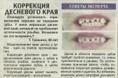 Фотоальбом стоматологической клиники Альфадент